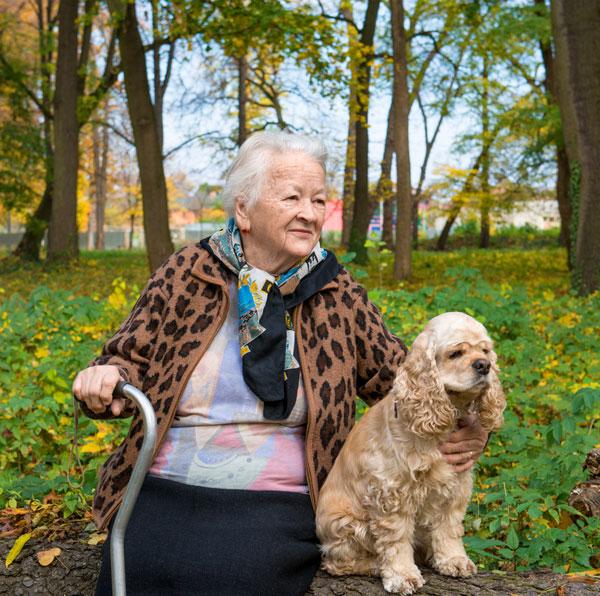 senior-lady-cocker-spaniel